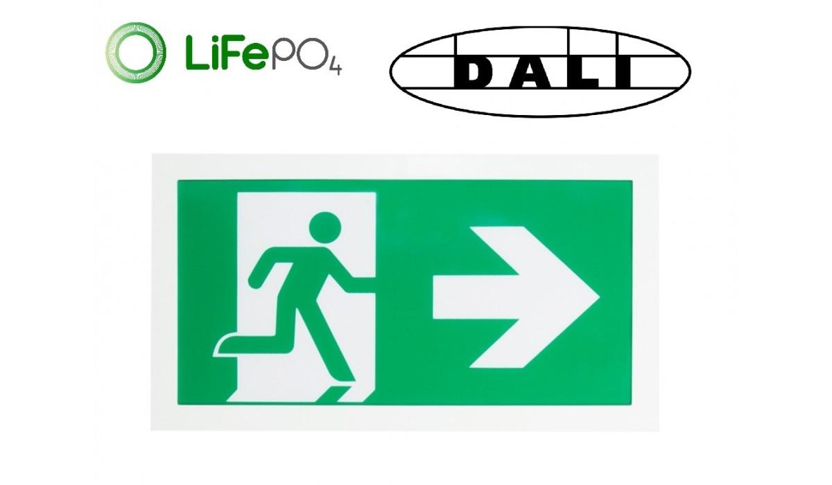CE2S/3W DALI Exit Sign