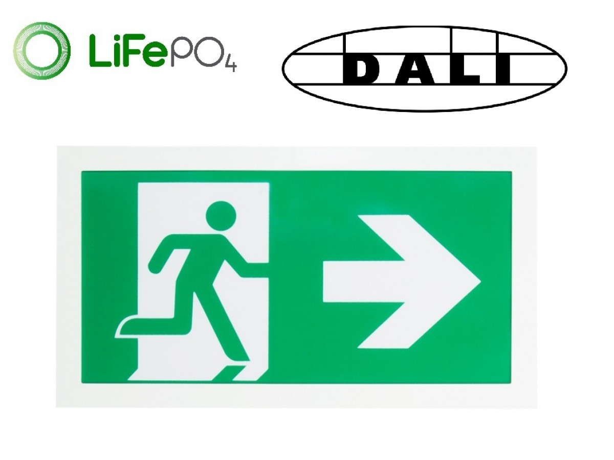 CE2S/3W DALI Exit Sign